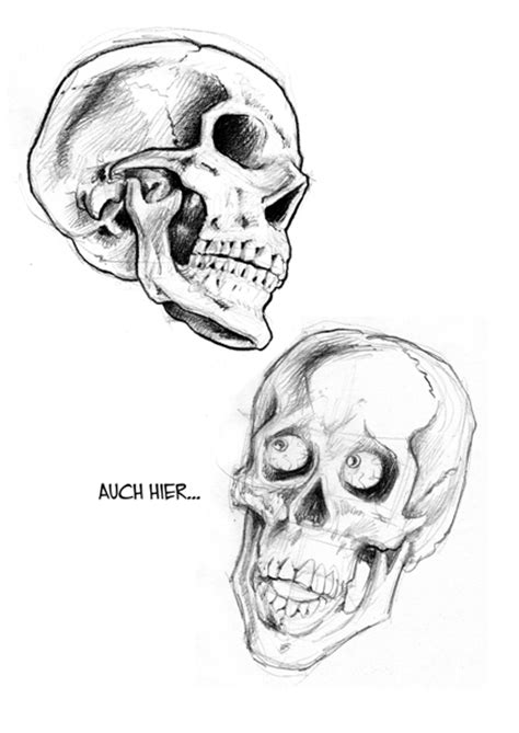 vorlagen totenkopf vorlagen zeichnen lernen mit steff murschetz bewertung de
