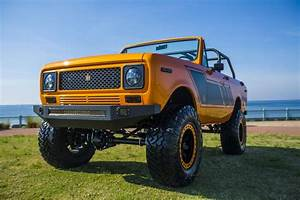 1979 International Scout For Sale  2271742