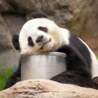Makronährstoffe Berechnen : abnehmen und di tfitness spartacus ~ Themetempest.com Abrechnung