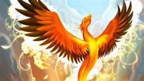 Vastu Tips: Keeping a picture of Phoenix bird at home brings success and fame. Know why ...