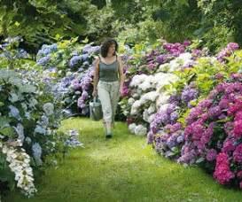 les 25 meilleures idees de la categorie hortensias sur With idee amenagement jardin paysager 16 massifs de roses mon jardin reve