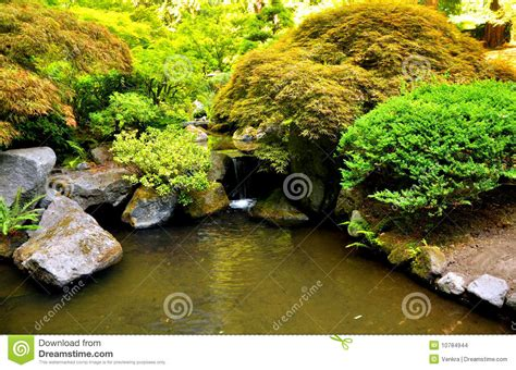 japanese garden stock images image 10784944