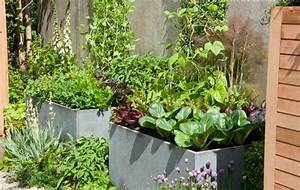 How to make kitchen garden in pots container kitchen garden for Kitchen garden pots