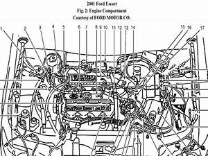 2000 Ford Escort And Zx2 Wiring Diagram Manual Original