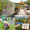 有機薈低碳農莊 Hello Kitty Go Green Organic Farm | 親子活動 family fun@香港2018
