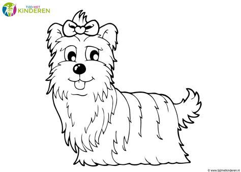 Puppy Hond Kleurplaat by Kleurplaat Hond 64 Gratis Allerleukste Honden Kleurplaten