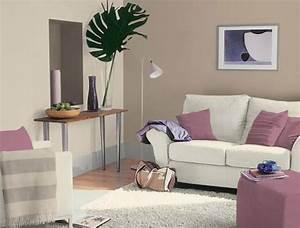 davausnet couleur peinture lin clair avec des idees With wonderful couleur peinture taupe clair 5 idee peinture salon sejour sol gris clair