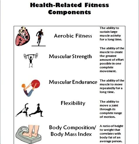 worksheets on health related fitness health concepts fitness testing mosinee pe mrs novitzke