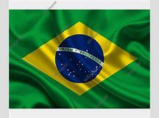 The National Flag of Brazil for Design