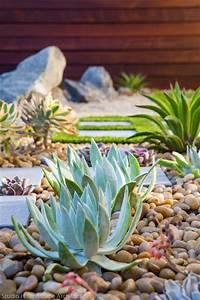Modern Zen Garden Desert Succulent Planting - Contemporary
