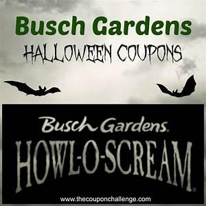 Promo busch gardenshtml autos weblog for Busch gardens promo
