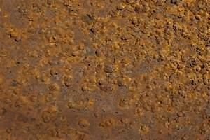 Bumpy Rust | ClipPix ETC: Educational Photos for Students ...