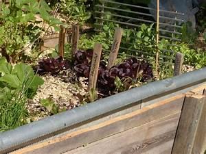 Hochbeet Bepflanzen Im 1 Jahr : hochbeet mit schneckenzaun ~ Frokenaadalensverden.com Haus und Dekorationen