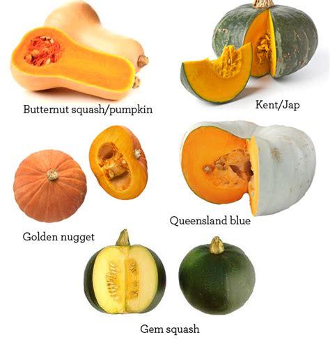 types of pumpkins 20 awesome paleo pumpkin recipes