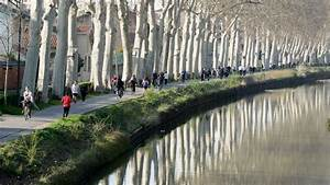 Midi Diesel Toulouse : un policier plonge dans le canal du midi toulouse et sauve une femme de la noyade ~ Gottalentnigeria.com Avis de Voitures