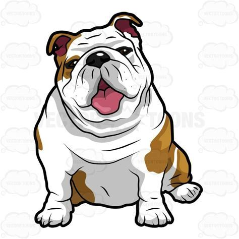 Wrinkly English Bulldog Sitting With Its Mouth Open