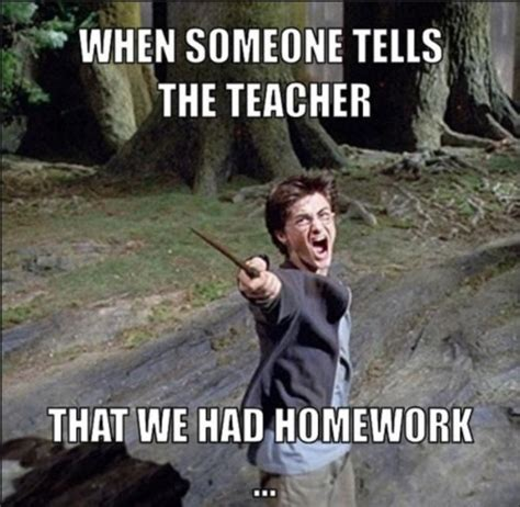 Homework Memes - should parents help their children with homework