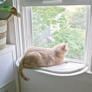 window perch for cats let s get catty part 1 copper dot interiors