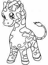 Coloring Giraffes Pages Children Animals sketch template