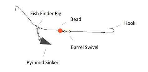 fish finder rig ultimate fishing site