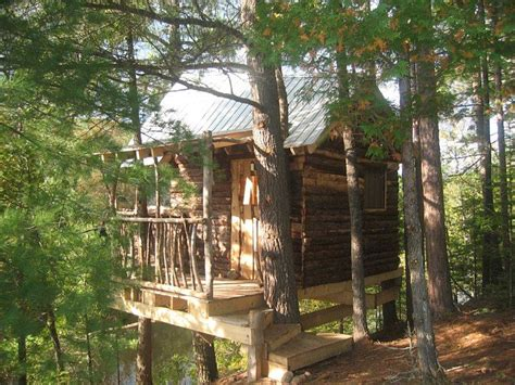 sweet home style tree house cool tree houses house  stilts