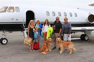 traveling with pets pet friendly private jet charter With private dog sitters