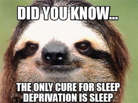 Sleep Deprived Meme - 25 sleep deprived moms share hilarious but unfortunate things they ve done