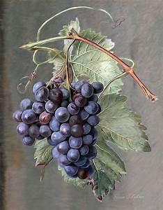 Grapes Painting by Enzie Shahmiri