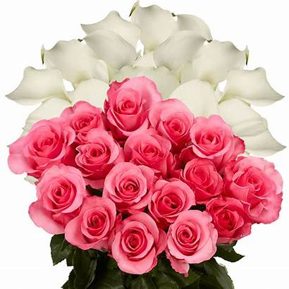 Dark Flower Arrangements Mothers Combo Globalrose Bouquets