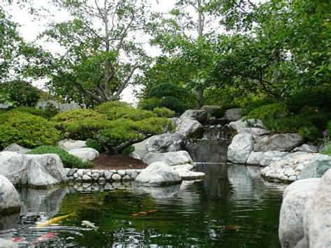 panoramio photo of balboa park japanese gardens 3
