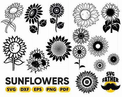 Sunflower Svg Silhouette Flower Monogram Floral Clipart