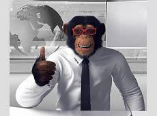 Die Story vom Affen TRIGEMA