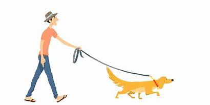 Dog Walker Illustration Clip Clipart Walking Cliparts