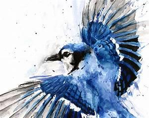 Blue Jay Watercolor Print Wildlife Artist Eric Sweet
