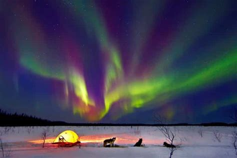 lights in alaska get mesmerized with the northern lights of alaska found