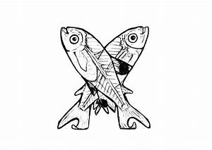 Malvorlage X X Ray Fish Ausmalbild 24821