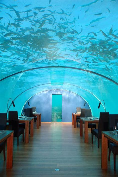 ithaa the maldives undersea restaurant