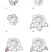 draw  rose  cool funny