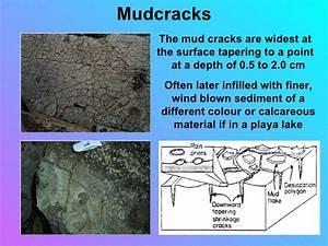 Sedimentary Structures Smallas