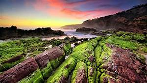 Sea, Coast, Sunset, Rocks, Green, Moss, Waves, Indonesia, Landscape, Photography, Hd, Wallpaper, 2560x1440