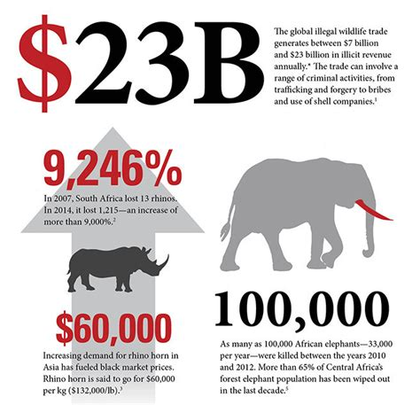 Wildlife crime: a $23 billion trade that s destroying our