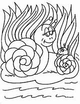 Coloring Snail Snails Fun Animals Pages Viewed sketch template