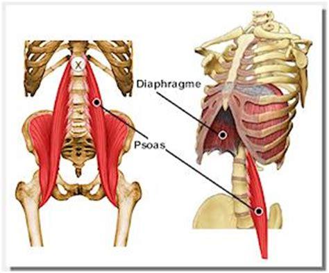 chiropratique cou thorax paule diaphragme