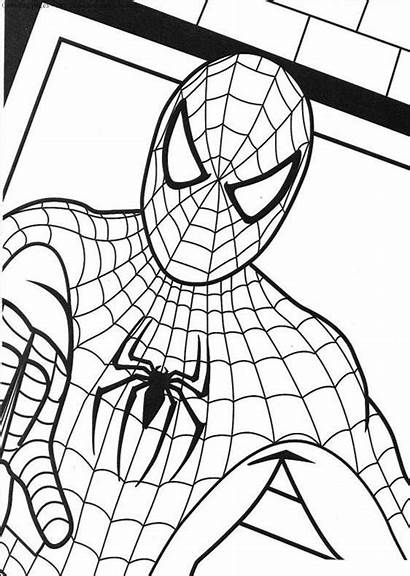 Spider Coloring Pages Miracle Timeless