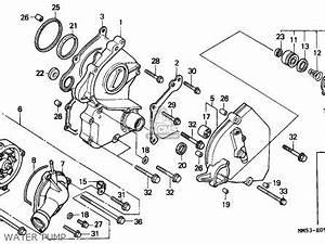 1987 honda goldwing gl1000 wiring diagram With 1987 honda hurricane 1000 wiring diagram wiring harness wiring