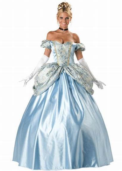 Cinderella Costume Costumes Halloween Princess Outfit Deluxe