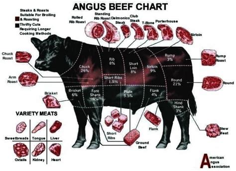 what is angus beef angus beef chart meat pinterest angus beef meat and food