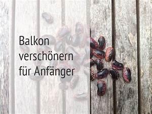 Balkon Wand Verschönern : eine ode an die feuerbohne von herzen vegan ~ Indierocktalk.com Haus und Dekorationen