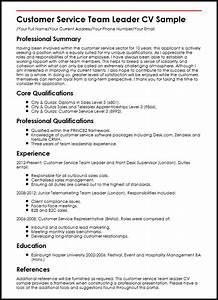 Sales team lead resume for Customer service resume profile