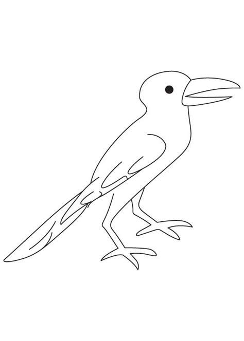 crow coloring sheet   crow coloring sheet